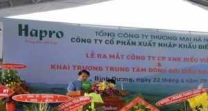 ra mắt công ty CP XNK Điều Việt Hà và khai trương trung tâm đóng gói điều nhân xuất khẩu